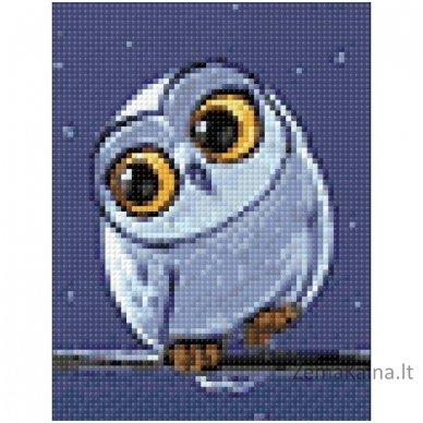 Deimantines mozaikos rinkinys - Owlet WD278 2