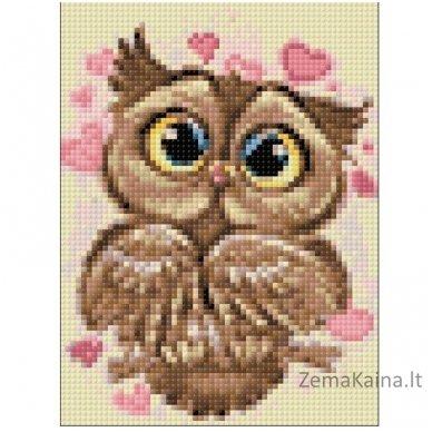 Deimantines mozaikos rinkinys - OWL IN LOVE WD296 2