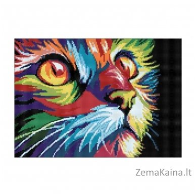 Deimantines mozaikos rinkinys - Rainbow Cat WD200 2