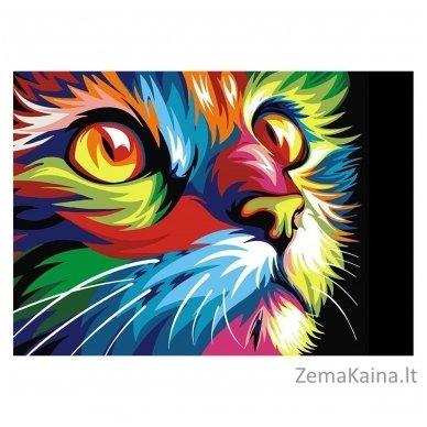 Deimantines mozaikos rinkinys - Rainbow Cat WD200