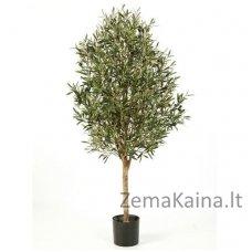 Dirbtinis augalas Alyvmedis