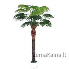 Dirbtinis augalas Palmė VII