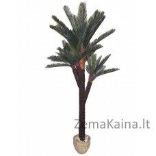 Dirbtinis augalas Palmė II