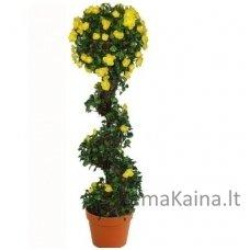 Dirbtinis augalas Vijoklis II
