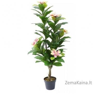 Dirbtinė gėlė Magnolija