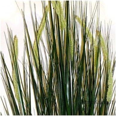 Dirbtinė žolė Smilga II 2