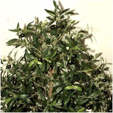 Dirbtinis augalas Alyvmedis 2