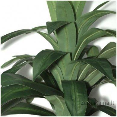 Dirbtinis augalas Dracena III 3