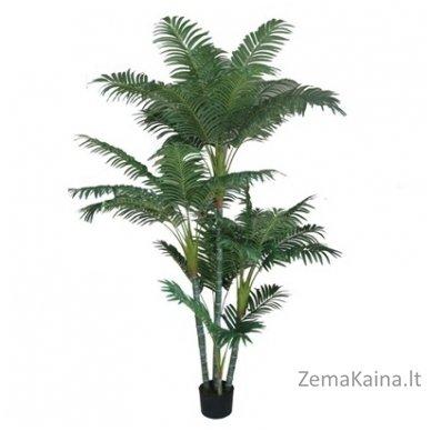 Dirbtinis augalas Palmė VI