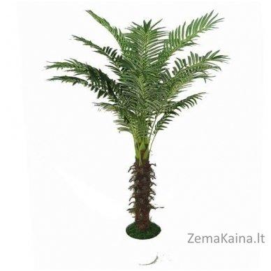 Dirbtinis augalas Palmė V