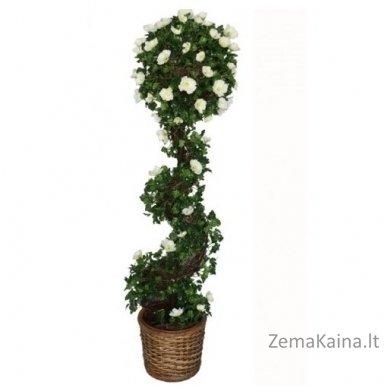 Dirbtinis augalas Vijoklis I