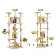 Draskyklė katėms, 200 cm, kreminė - Vangaloo