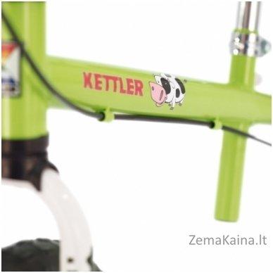 Balansinis dviratukas Speedy 12,5'' Emma 2
