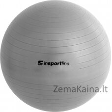 Gimnastikos kamuolys + pompa inSPORTline Top Ball 45cm - Grey