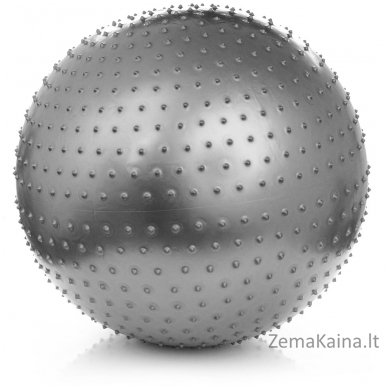 Gimnastikos ir masažo kamuolys Meteor 75 cm sidabrinis