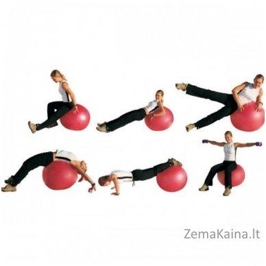Gimnastikos kamuolys inSPORTline Top Ball 85 cm rožinis 4