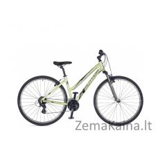 """Kalnų dviratis AUTHOR Linea Lotos Green 19"""""""
