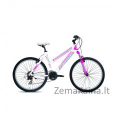 Kalnų dviratis Torpado 591 Storm 48 fuxia
