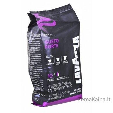 Kavos pupelės Lavazza Gusto Forte Expert 1 kg
