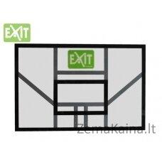 Krepšinio lenta Exit Galaxy 116x77cm