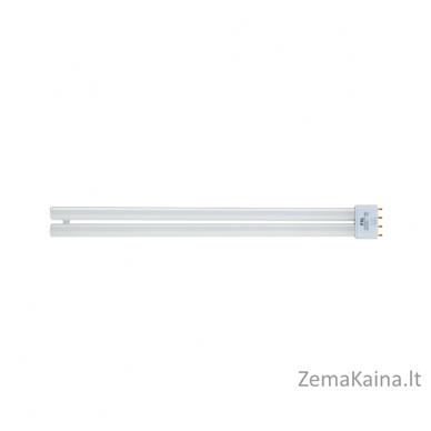 Papildoma GENIAL LIGHT / LUMINO PLUS lempa x 2vnt.