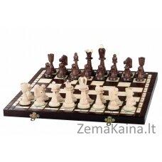 Šachmatai ACE