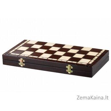 Šachmatai ACE 3