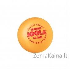 Stalo teniso kamuoliukai Joola Training (120vnt.) - Orange