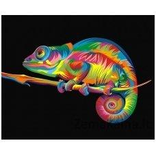 Tapymas pagal skaičius: Chameleonas (50x40cm T40500004)