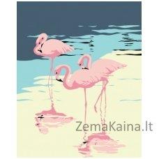 Tapymas pagal skaičius: Flamingai (16.5x13 cm T16130014)