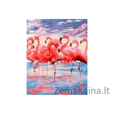 Tapymas pagal skaičius Flamingai 40X50 CM H112
