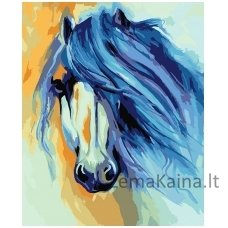 Tapymas pagal skaičius: Horse - Marcia Baldwin (50x40cm T50400124)