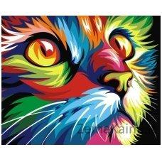 Tapymas pagal skaičius: Katė (50x40cm T40502007)