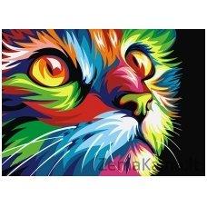 Tapymas pagal skaičius: Katė (A4 29,7x21cm TA40108)