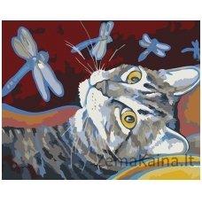 Tapymas pagal skaičius: Katinas ir laumžirgiai (16.5x13 cm T16130101)