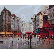 Tapymas pagal skaičius: Moulin Rouge - Moulin Rouge (40x50 cm T40500202)