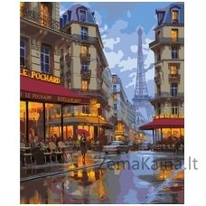 Tapymas pagal skaičius: Naktis Paryžiuje (50x40cm T50400040)