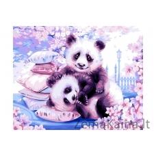 Tapymas pagal skaičius Panda  40X50 CM H107