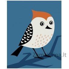Tapymas pagal skaičius: Paukštis (16.5x13cm T16130112)