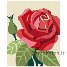 Tapymas pagal skaičius: Rožė (16.5x13 cm T16130019)