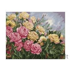 Tapymas pagal skaičius Rožės B062
