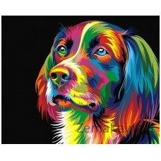 Tapymas pagal skaičius: Šuo (50x40cm T40500006)