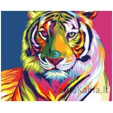 Tapymas pagal skaičius: Tigras (50x40cm T40500071)