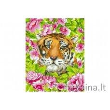 Tapymas pagal skaičius Tigras H099