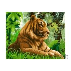 Tapymas pagal skaičius Tigras H110