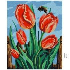 Tapymas pagal skaičius: Tulpė (16.5x13 cm T16130062)