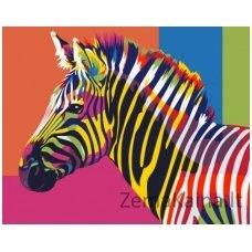 Tapymas pagal skaičius: Zebras (16.5x13 cm T16130006)