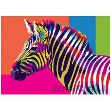 Tapymas pagal skaičius: Zebras (50x40cm T40500077)