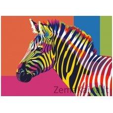 Tapymas pagal skaičius: Zebras (A4 29,7x21cm TA40107)