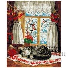 Tapymas pagal skaičius: Žiema už lango (50x40cm T50400031)